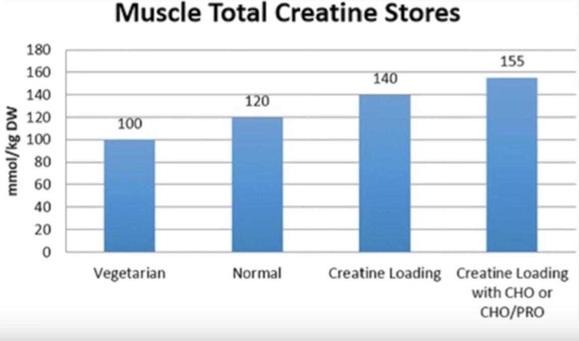 wie creatin einnehmen