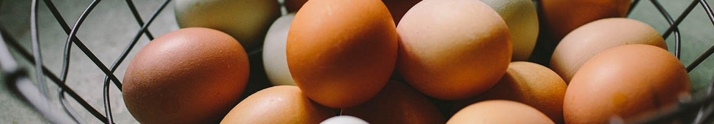 Sind Eier gesund oder ungesund?