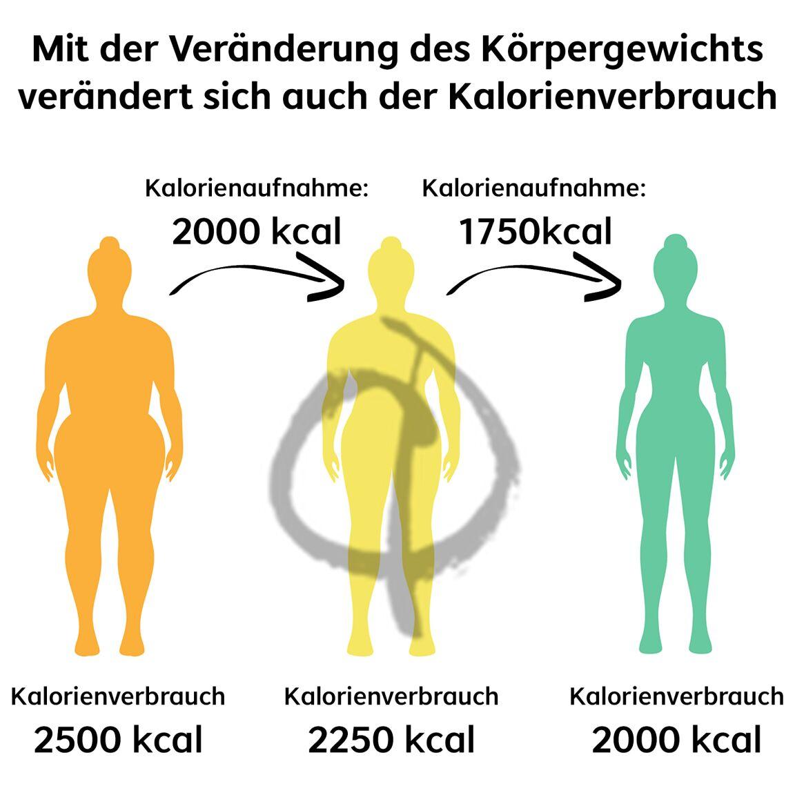 Kalorienbedarf Abnehmen