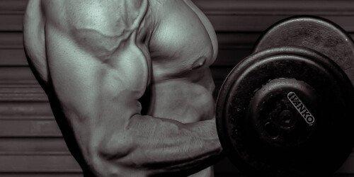 Pump Muskelaufbau - Besseres Muskelwachstum durch Pump? (Wissenschaftliche Analyse)