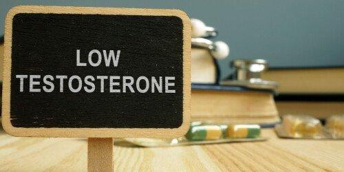Testosteron steigern - Testosteronspiegel erhöhen mit Wissenschaft (Studien-Analyse)