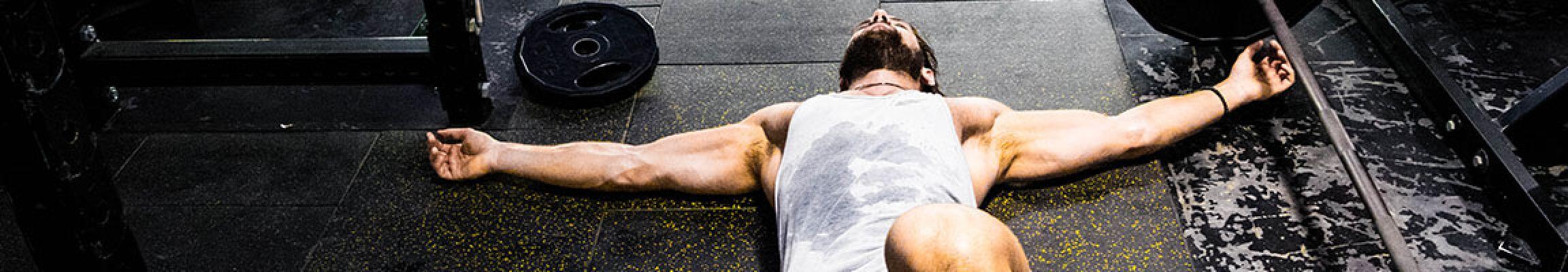 Das Fitness Fibel Athleten Bundle