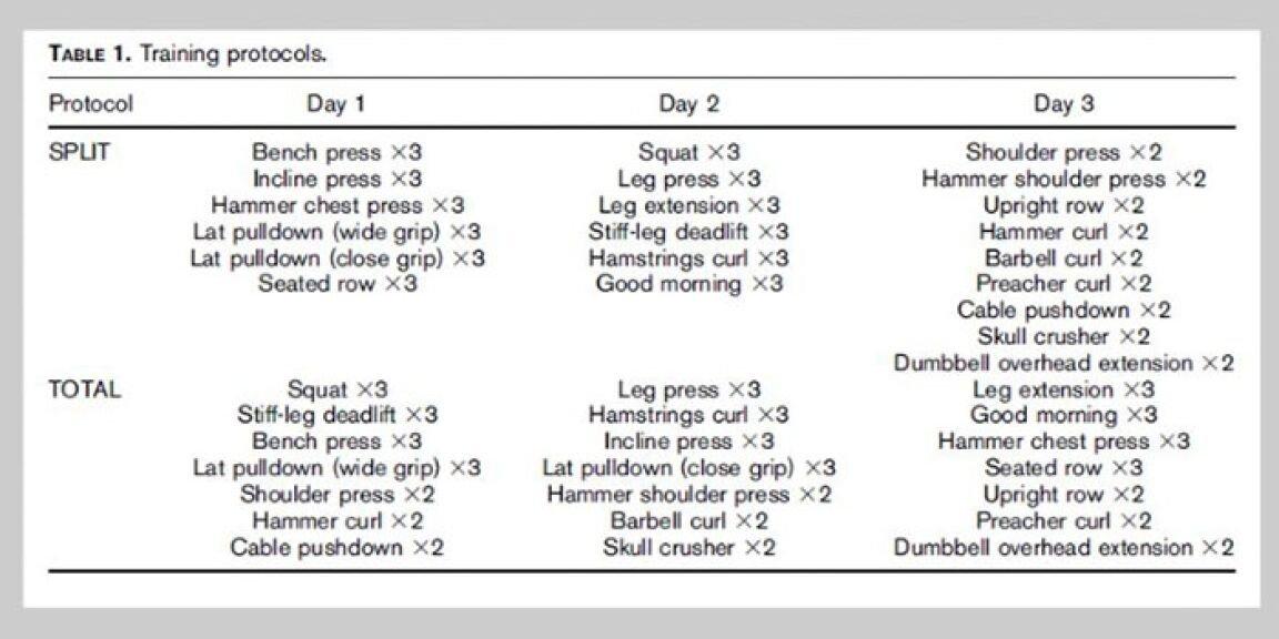 Trainingsfrequenz Studie