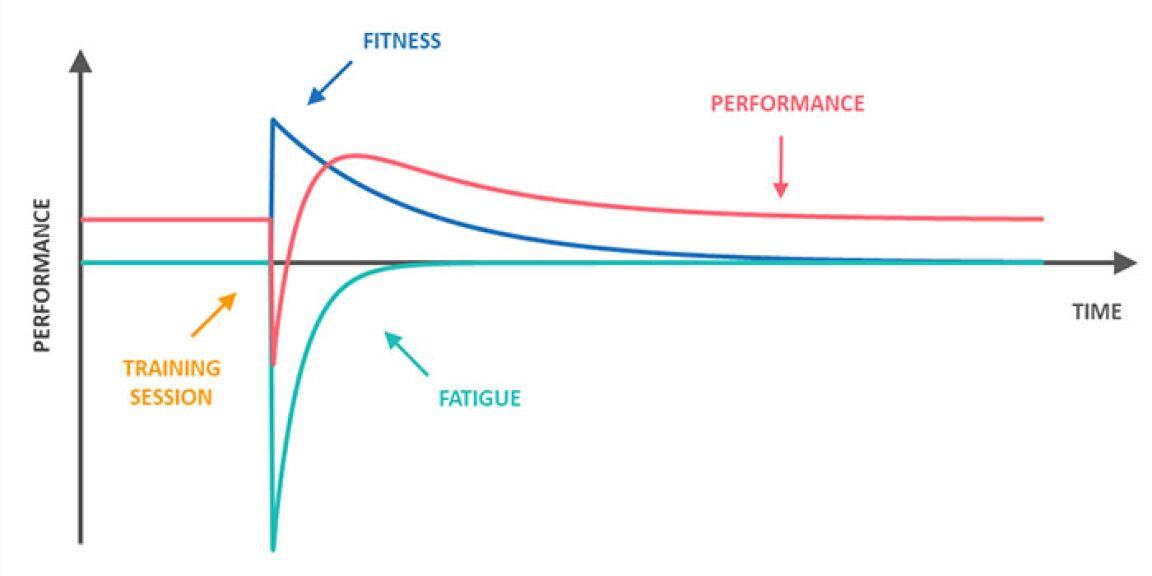 Ermüdung Trainingsfrequenz